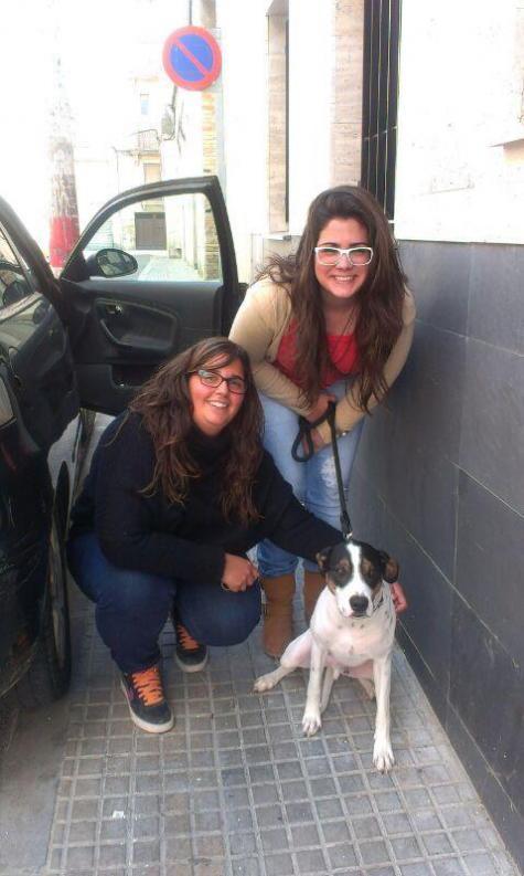 Coqui perro adoptado bamb difunde - Perrera de vilafranca ...